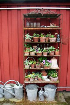 Lindas trädgårdsblogg: Andras trädgårdar