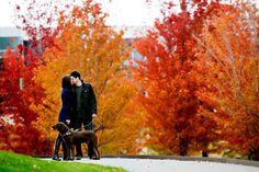 The leaves are on the verge of changing in Minneapolis, Saint Paul, and southern Minnesota. It may be too breezy for shorts and beach days, but we're all about to be rewarded with vibrant reds and yel...