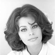 Italian actress Sophia Loren posed for a portrait in the studio photo. 1962 Get premium, high resolution news photos at Getty Images Hollywood Glamour, Hollywood Stars, Hollywood Actresses, Classic Actresses, Beautiful Actresses, Loren Sofia, Sophia Loren Images, World Most Beautiful Woman, Italian Actress