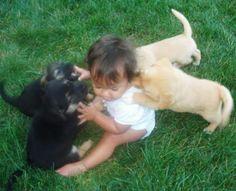 Baby met puppies