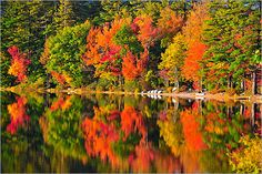 New England: Nice place to see pretty fall foliage, and get a honeymoon out of the way...