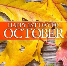 October is here with Welcome to October! Halloween will be here before you know it. 1st Day, Scentsy, October, Thanksgiving, Fall, Red Wine, Birthdays, News, Halloween