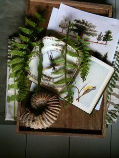botanical decorating