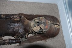 The black chest of this Chinchorro mummy shows signs of degradation, even though it is housed at the University of Tarapac�%u2019s archeological museum in Arica, Chile.