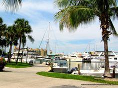 Island Park - Sarasota Bay