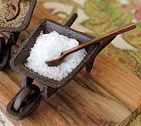 Cast-Iron Wheelbarrow Salt Cellar | Pottery Barn