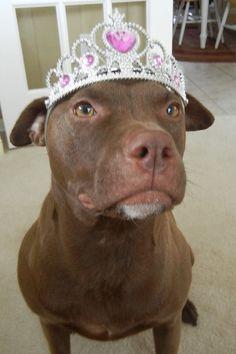 Princess B