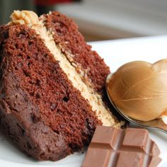 Reeses Peanut Butter Cake - the filling is amazing!