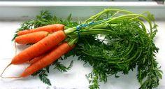 bunch of bio garden carrots