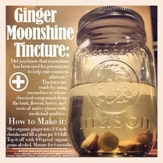 Organic Alcohol Tincture - Ginger Moonshine