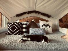 Pop Up Camper Trailer, Popup Camper, Camper Trailers, Camper Cushions, Boho Theme, Camper Makeover, Camper Renovation, Camper Life, Remodeled Campers