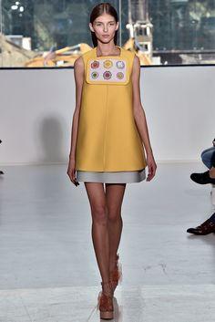 Delpozo Spring 2015 Ready-to-Wear Fashion Show - Anastasia Lagune