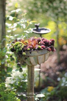 Gartenbesuch bei Happy Sonne, Ein Schweizer Garten, Teich, Gartenhaus, romantische Sitzplätze, Kräuter, Hochbeet, Gemüse, Gartendeko, Pavillion, Clematis,