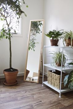 Muji's pinewood mirror is perfect for any space.