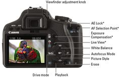 Canon EOS Rebel T1i/500D For Dummies Cheat Sheet - For Dummies
