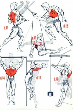 """Do all of these...awesome.  work the back, get the """"v"""" shape...lats make that happen -dc #BackWorkouts"""