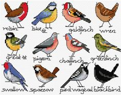 Bird cross stitch free chart