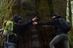 From Green River College International Programs: Int'l students hiking at Franklin Falls in Washington! http://studyusa.com/en/schools/p/wa022/green-river-college #GRCIP #GreenRiverCollege #FranklinFalls #InternationalStudents