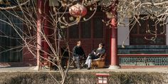 By building a network of 'ecological temples,' leading Taoist monks are serving as role models for sustainable practices.