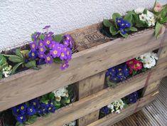 palette-recup-bois-diy-recup-palette-bois-jardiniere-verticale
