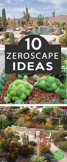 In desert or drought-prone areas, Xeriscaping is becoming more and more popular. However, it's hard to give up soft green grass for something completely different. Luckily, we've gathered some of the most beautiful and ingenius ideas in xeriscaping to inspire your own creativity.  Often, xeriscaping and zero-scaping are used interchangeably, but there