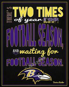 Baltimore Ravens Football Season