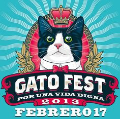 Gato Fest 2013