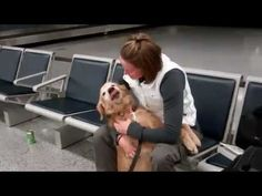 Dog crying when reunited with owner, who is a soldier. so touching!