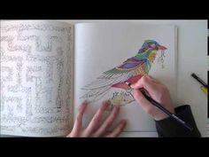 Enchanted Forest - Johanna Basford; Bird - YouTube
