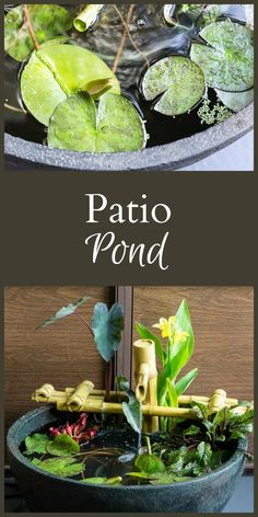 A patio pond can be the perfect solution for those who love the sound and beauty of a water feature but are limited on space.