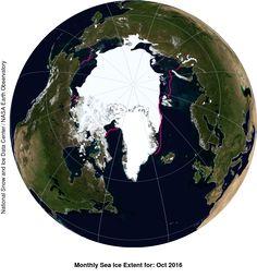 Lód morski w opałach | naukaoklimacie.pl