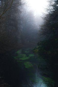 """dennybitte: """"misty creek by Denny Bitte """""""