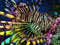 lionfish print - Google Search