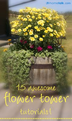 Cone flower, pampas grass, zinnias, and nasturtium (full sun) Container Plants, Container Gardening, Outside Plants, Flower Tower, Pot Plante, Tower Garden, Garden Planters, Outdoor Planters, Mellow Yellow