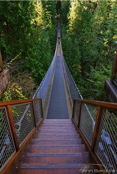 The suspension bridge - Vancouver