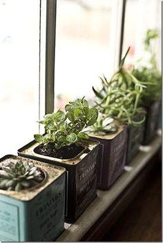 tea box herbs