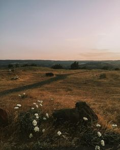 The Dalles, OR