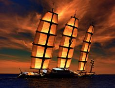 Maltese Falcon  Flickr...
