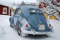 [ Snow Beetle - Volkswagen ]