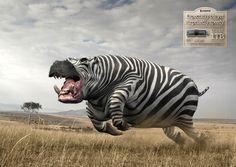 """Previsivelmente grande, surpreendentemente rápido"" Campanha da Havas Worldwide para a Kingston. #ad #publicity #photomanipulation #design"