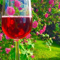 Rose wine and roses = Summer