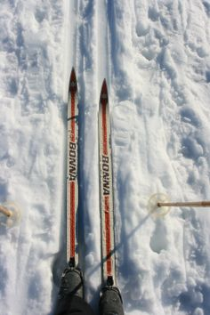 Cross-country ski day (Pattern and Branch)