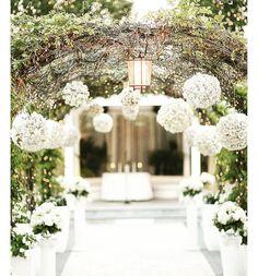 What a pretty entrance ✨✨✨
