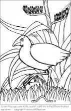 Quiver Augmented Reality coloring apps: print, color and see your drawing in beautifully hand-animated worlds Coloring Apps, Colouring Pages, Maori Patterns, International Craft, For Elise, Nz Art, Maori Art, Bird Embroidery, Kiwiana