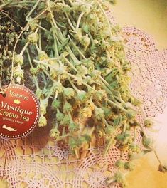 Λικέρ από μαλοτήρα: το γλυκύτερο φάρμακο   Κουζίνα   Bostanistas.gr : Ιστορίες για να τρεφόμαστε διαφορετικά Sweet Words, Cookie Recipes, Food And Drink, Herbs, Entertaining, Homemade, Tea, Drinks, Plants