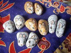 Bunnies again | by Borneo Rocks!