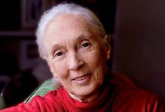 """""""What you do makes a difference, and you have to decide what kind of difference you want to make.""""  -Jane Goodall"""