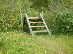 Day 4 -- Stiles allow hikers on the Appalachian Trail to cross fences without having to open and close gates.