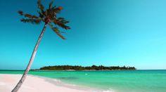 Beach Hd Wallpaperwidescreen Wallpaper Beachhd Background Free Download
