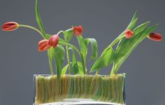 Rectangular glass planter #home #decor #planter #planters